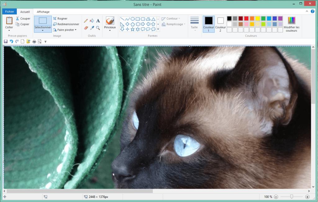 article caprture écran usage paint
