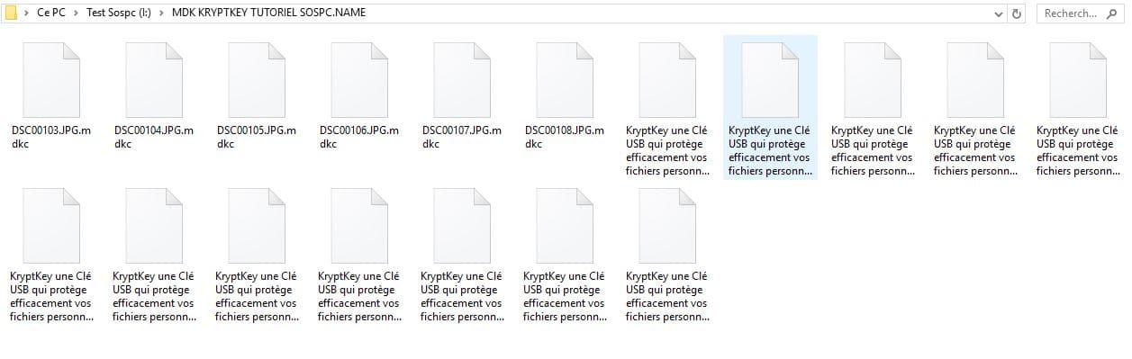 utilisation kryptkey 9