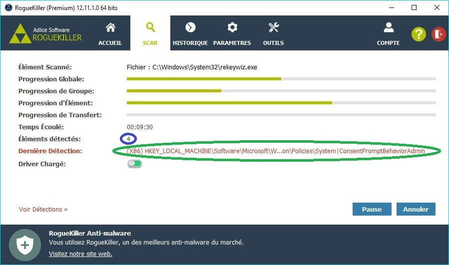 RogueKiller paramétrages premium analyse