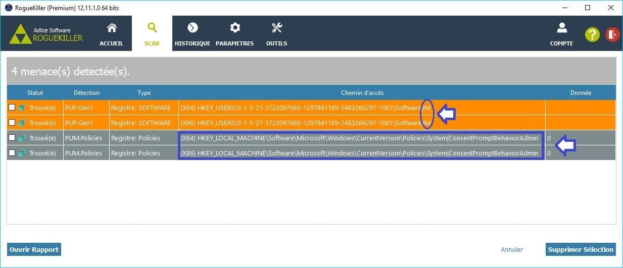 RogueKiller paramétrages premium scan