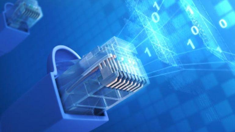 Le câble Ethernet, un maillon souvent négligé de nos configurations informatiques.