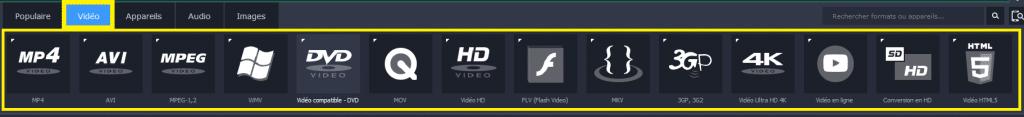 Movavi Video Converter 17 formats compatibles 1