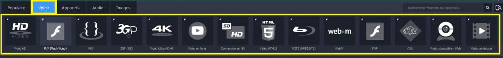 Movavi Video Converter 17 formats compatibles 2