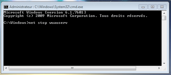 bug avec Windows Update, la solution sospc capture 9