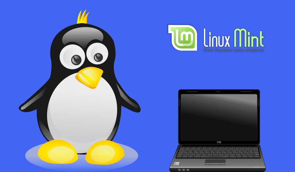 linux mint installation dual boot