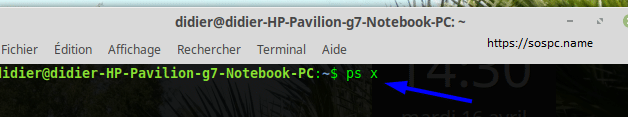Linux Mint que faire si Internet venait à se figer, image 4