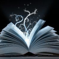 Le livre : chapitre 2.